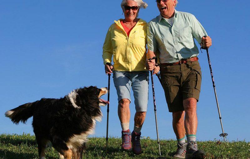 Скандинавская ходьба — лучшая физкультура для пенсионеров