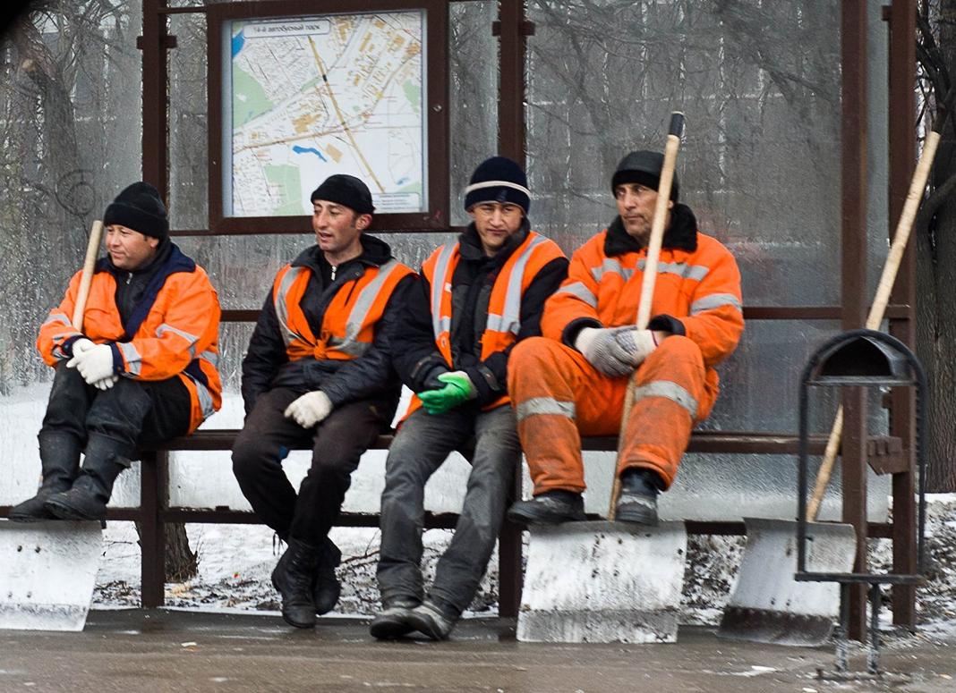 места мигрантов предложат пенсионерам