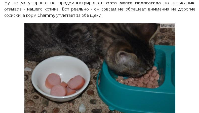 корм для кошек Чамми
