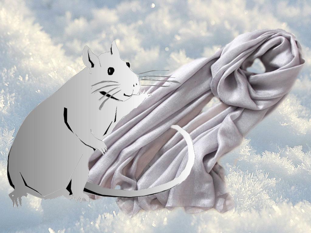 шарфы к НГ 1