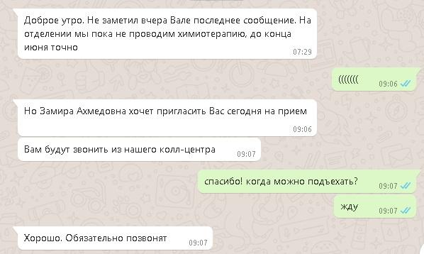 котов1